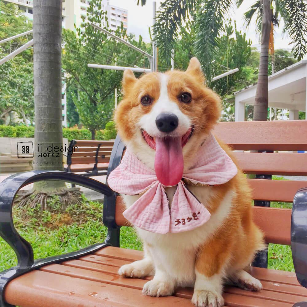 Dog Reversible Bandana Singapore   Dog Sailor Bow Neckerchief   Dog Bandana with Customized Hand-embroidery Name「 ii Design Workz 」
