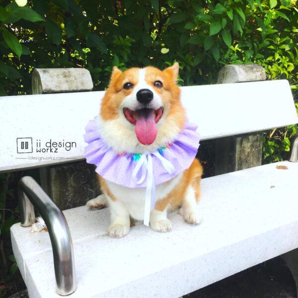 Dog Collar Singapore | Dog Bandana | Dog 360 degree Collar | Dog Accessories「 ii Design Workz 」